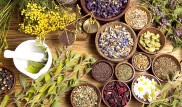 إقبال كبير على اقتناء الأعشاب الطبية - المساء